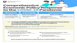 Comprehensive Economic Policy Response to the COVID-19 Pandemic